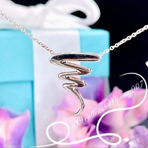 Tiffany & Co. Paloma Picasso Zig Zag Scribble Necklace in Sterling Silver